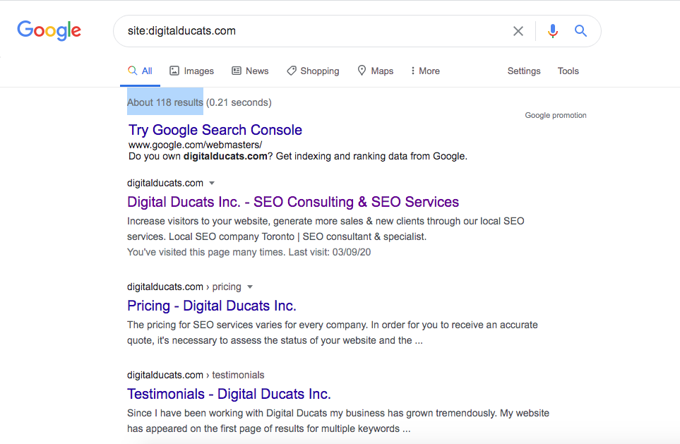 Check the small business SEO status in regards to indexed pages using Google Site search